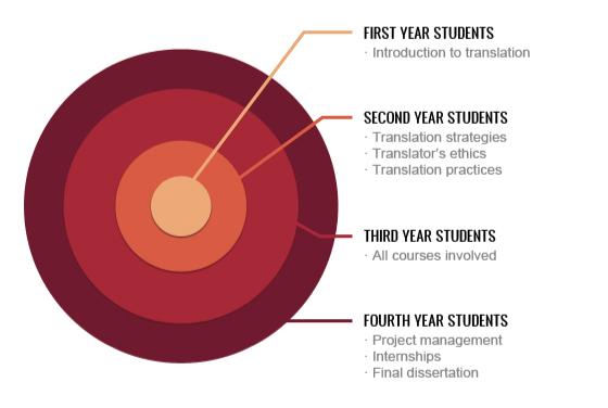 Studies infographics